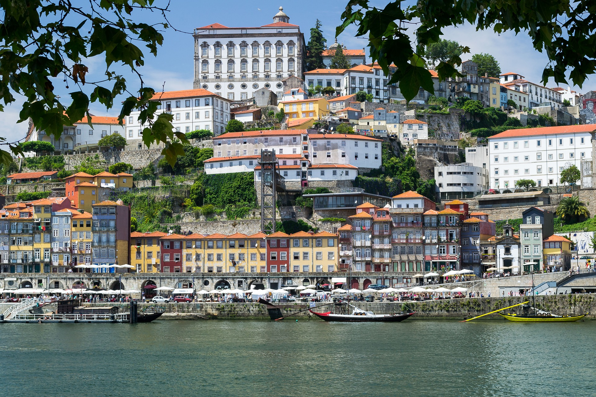 Top Excursions and Things to Do in Porto