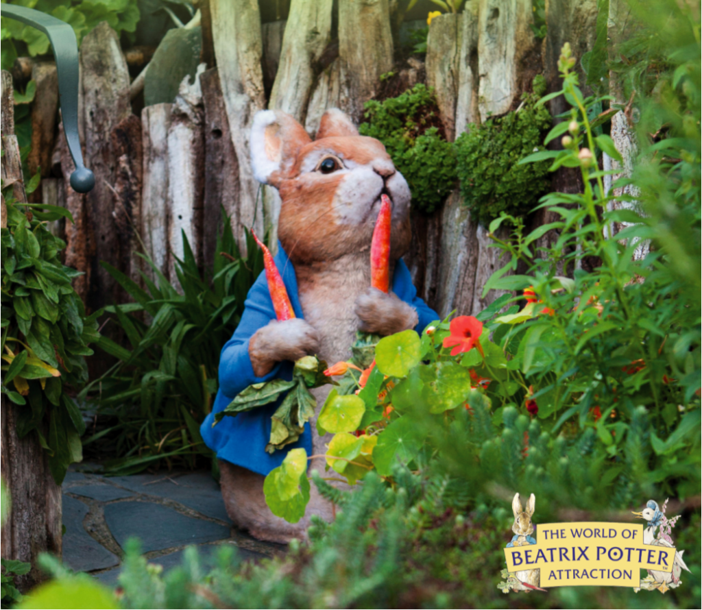 Peter Rabbit at World of Beatrix Potter Attraction